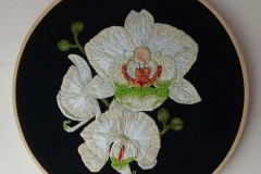 Hand-embroidered-Phalaenopsis-Orchid-hoop-10-inches.