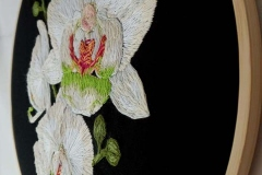 Hand-embroidered-Phalaenopsis-Orchid-hoop-10-inches