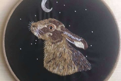 Hare-for-Tanya